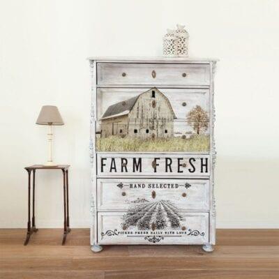 The Farm Life Transfer