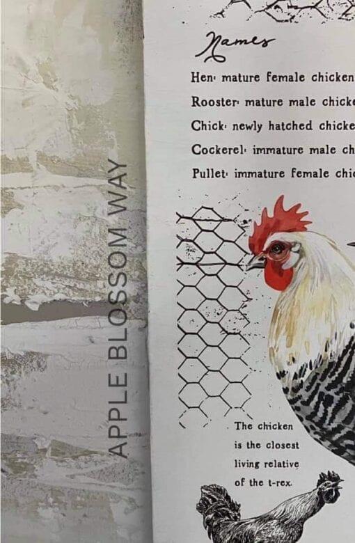 farm life transfer chicken