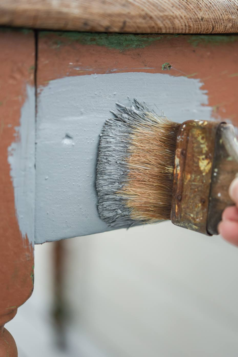 Miss Mustard Seed\'s Aviary Milk Paint   Painted