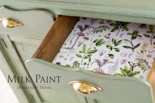 acadia pear milk paint